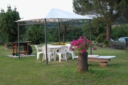 Nel Parco dei colli Euganei a un'ora da Venezia - Boccon - 公寓