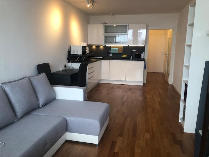 Modernisiertes Apartment, Zentrallage