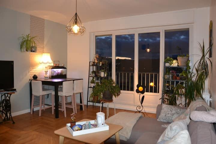 Appartement 47m2 cosy proche commodités