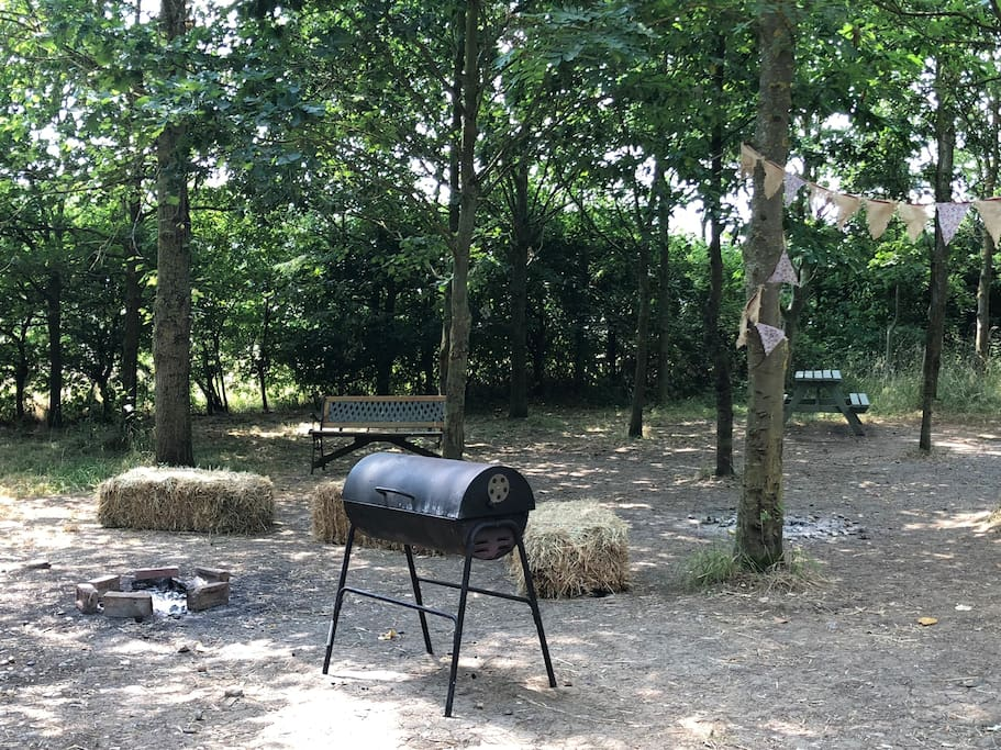 BBQ area near one of our Pitts Cabins