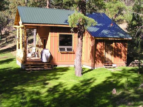 Elk Ridge Cabin in the pines