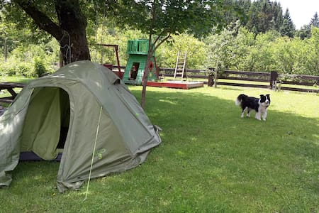 Camping on the green garden - Belsko - Sátor