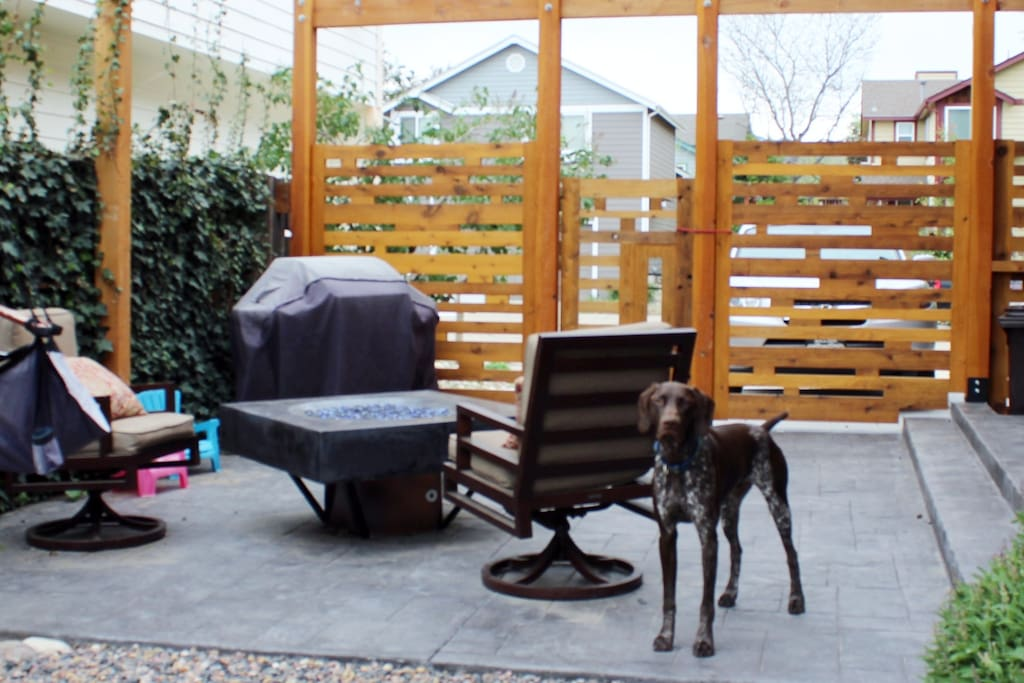 Large patio with gas firepit, BBQ gas grill and hammock chair.