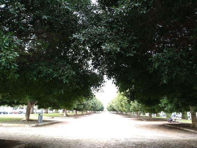 Parque cercano a casa.
