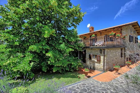 Villa Lorena with private pool - Capolona - Villa