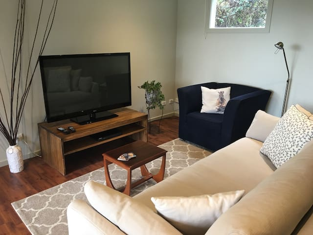 Large TV with Netflix/DVD