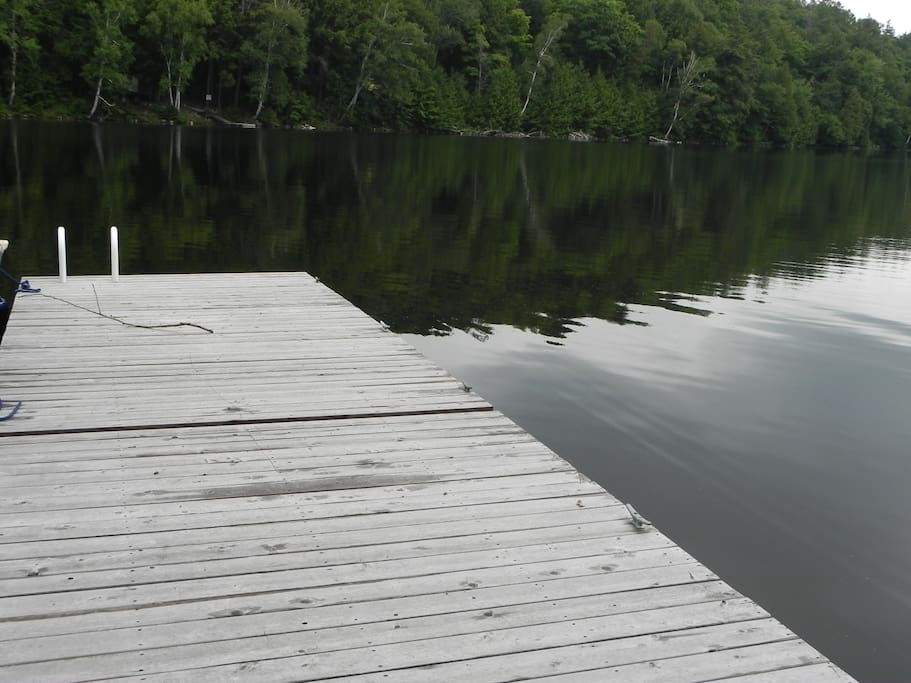 Excellent swimming off dock