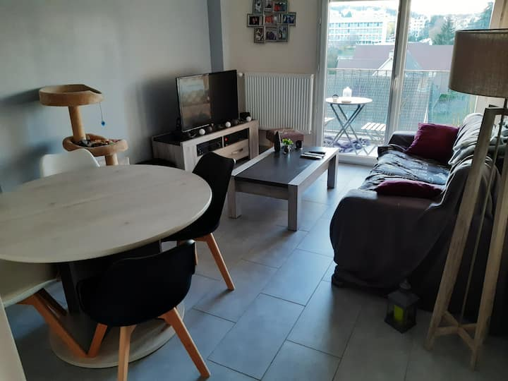 L'appartement cosy
