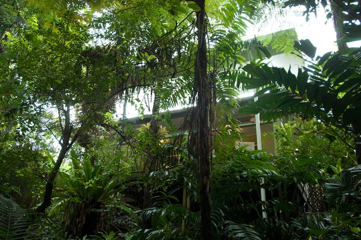 Tropical oasis close to town. - Whitfield - Villa