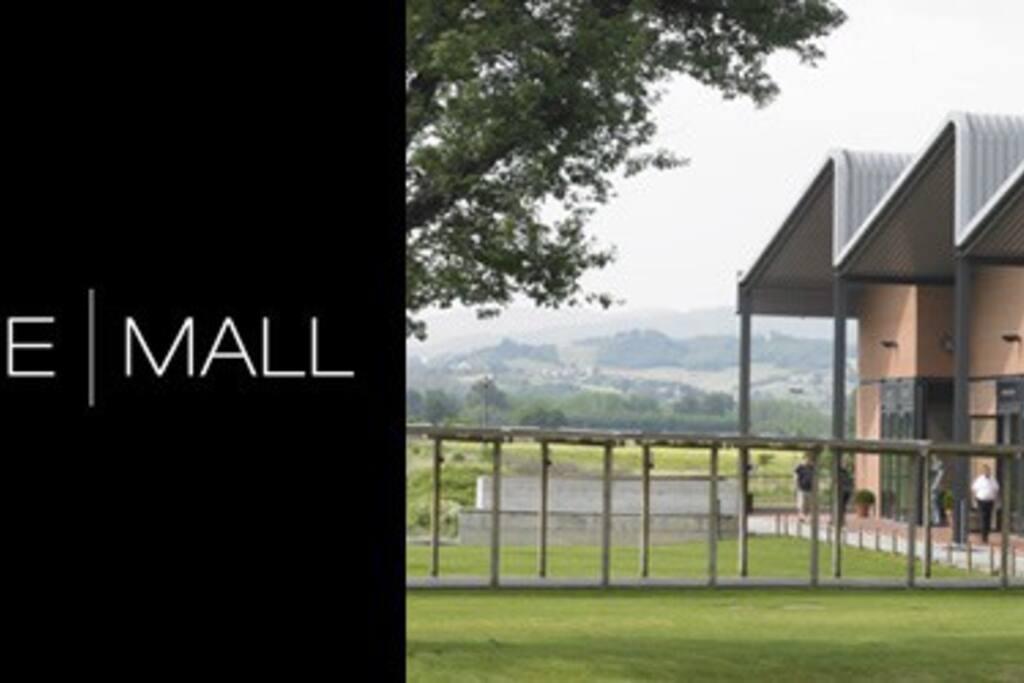 Centro commerciale TheMall ansolo 5 minuti