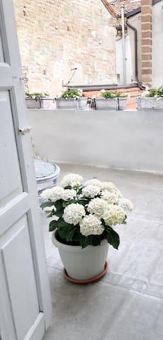 Single sui tetti con balcone e giardino privato
