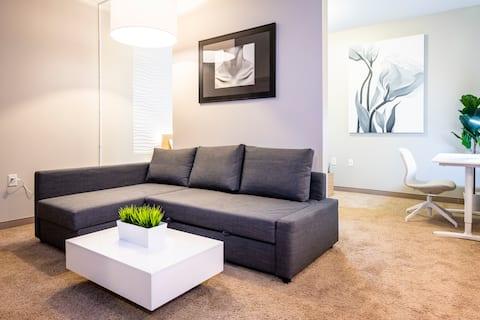 Modern Downtown Luxury Apartment