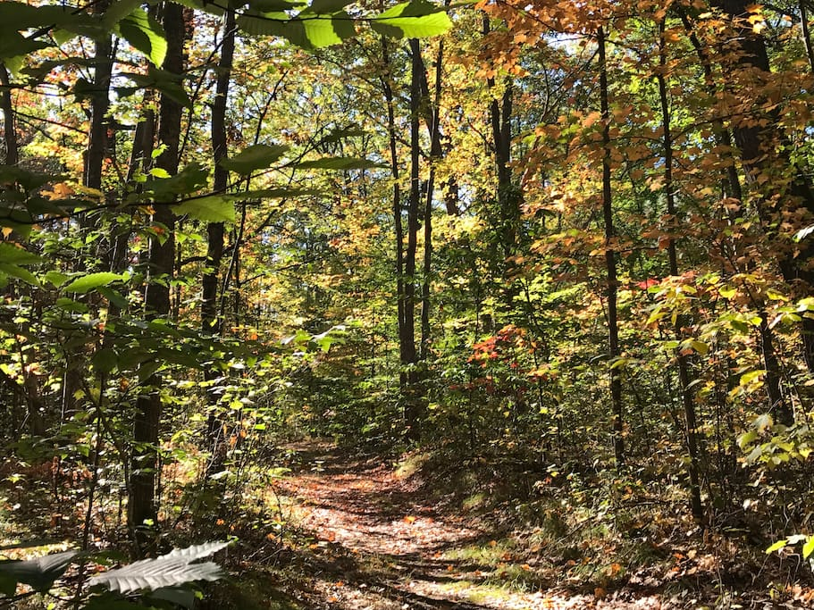 Fall colors and four season hiking / biking
