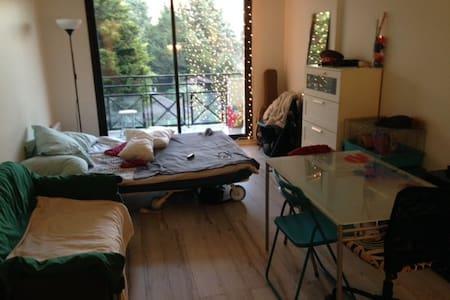 Studio proche Paris, parking privé - Fontenay-aux-Roses - Apartment