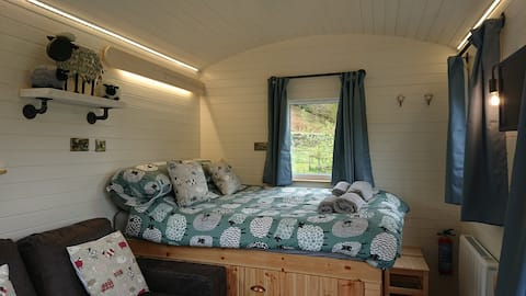Woolly Wagon Shepherds Hut Snowdonia sleeps 3