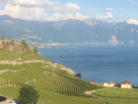 Lausanne, Vevey Montreux : Cosy room in the Lavaux