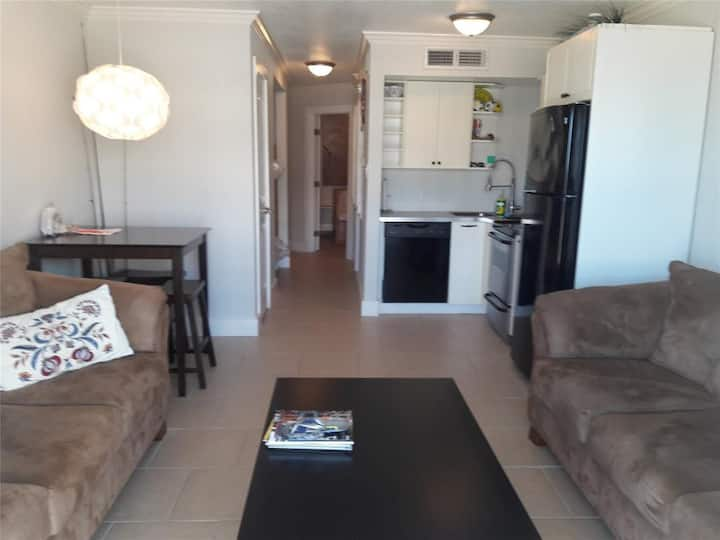 Gulf view condo on  the seawall!