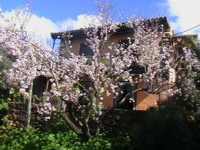 Wunderschönes Ferienhaus mit Meerblick - Santo Domingo - House