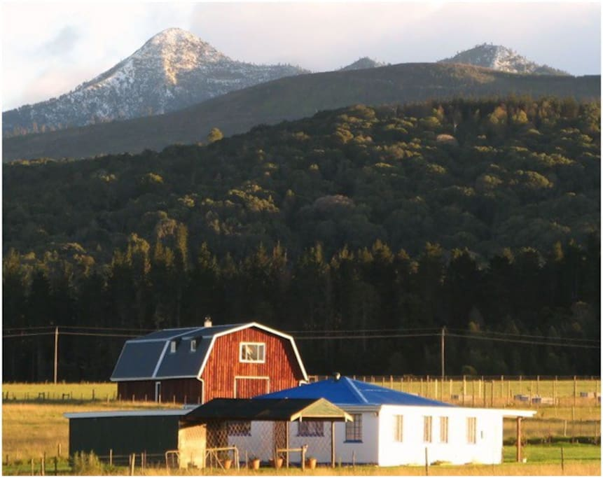 Beautiful landscape around farm!