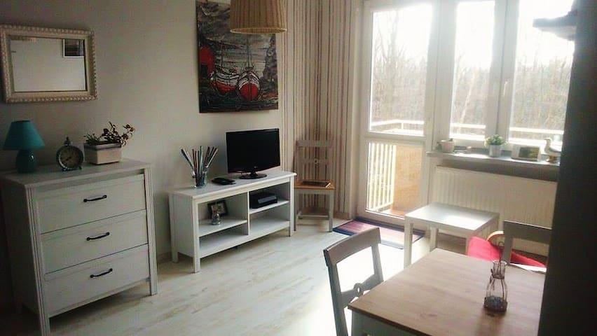 KLIMATYCZNY APARTAMENT 30m2 NAD MORZEM GDYNIA - Gdynia - Lägenhet