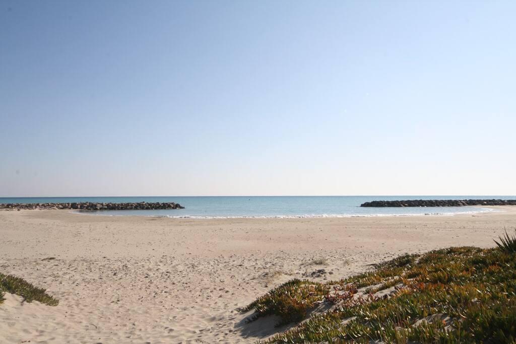 La plage à 200 m