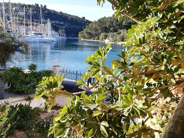 Sunshine apartment in Gaios  - PAXOS
