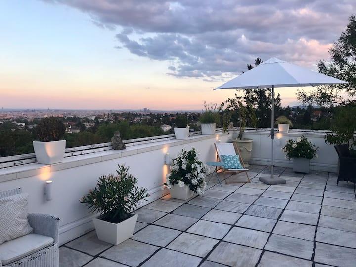 Dream Studio with amazing Terrace! Stunning view !