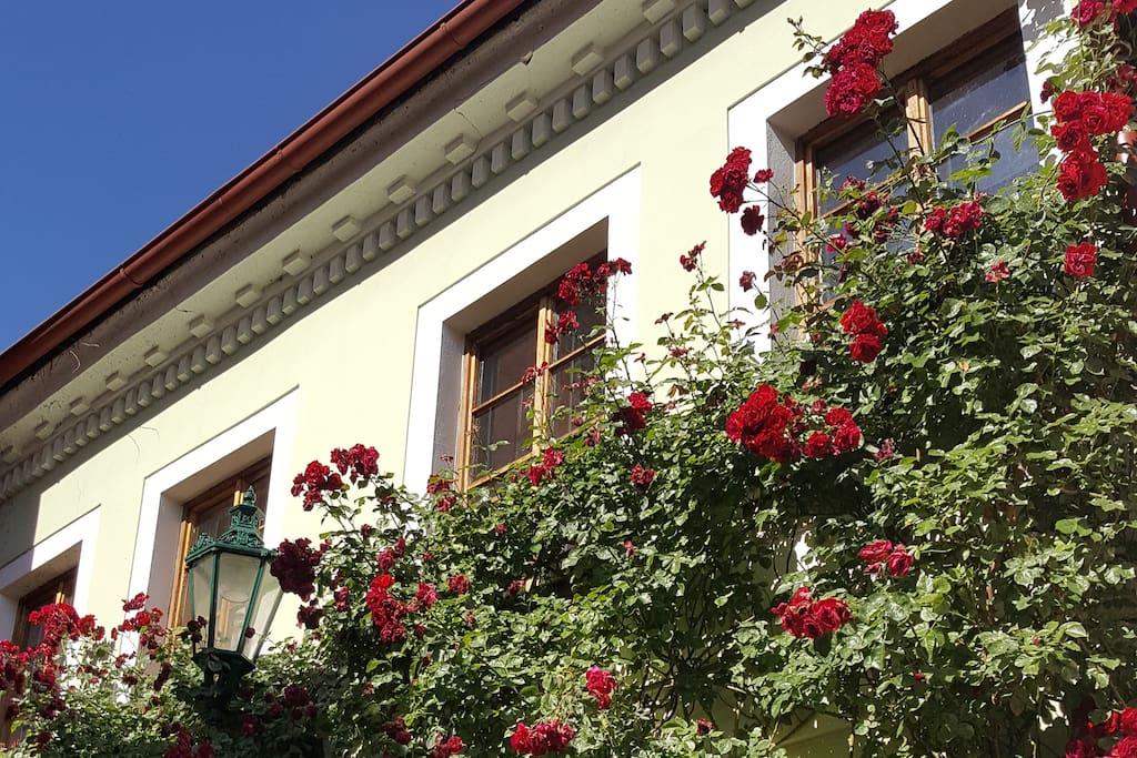 House of roses dvoul kov pokoj casas cueva en - Casas en roses ...
