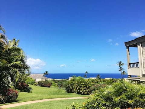 Remodeled 2-bedroom luxury condo with ocean views