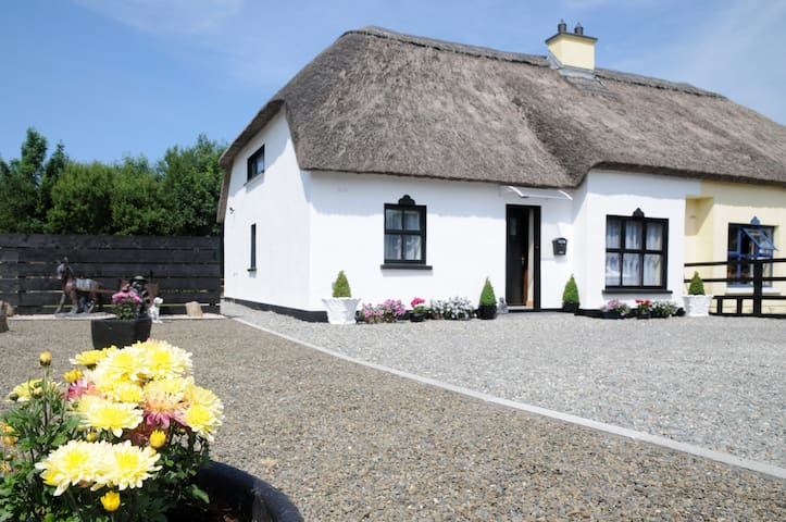 The Daffodil Cottage