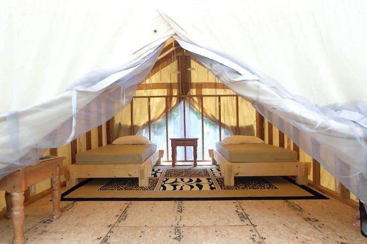 The Chickadee Tent