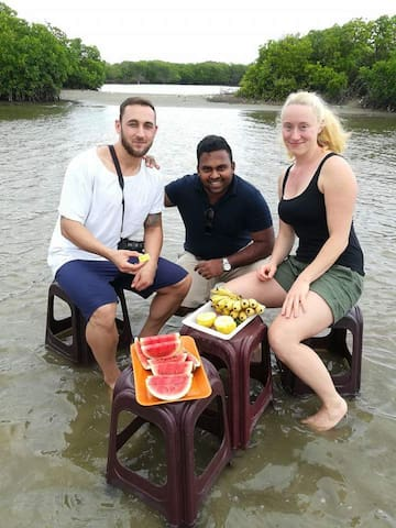 Sorrounding area mangrove lake