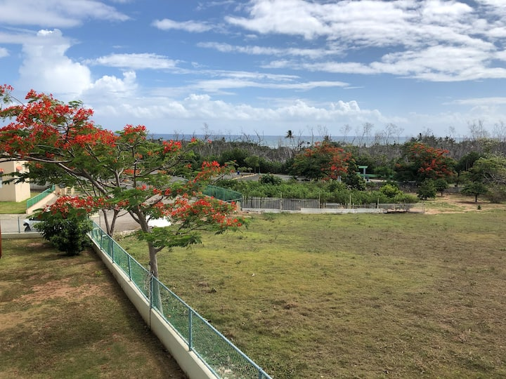 Ocean breeze apartment located in the tranquile town of Camuy. Near beaches, great surfing and snorkeling spots at the north and west side of the island. Also close to other attractions such as National Caves Park, Zip line Adventure, Horseback riding, Ex