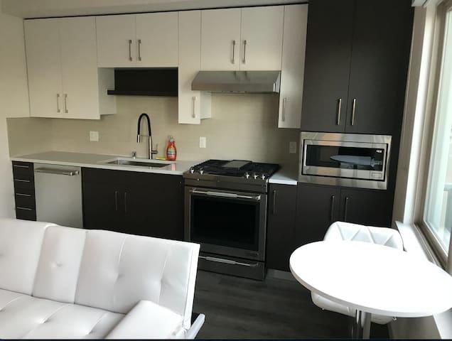Luxurious 1bd/1bth Apartment w/ amenities