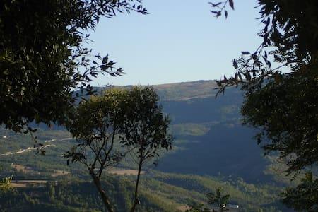 Casa della Loggia - Calitri - Dům