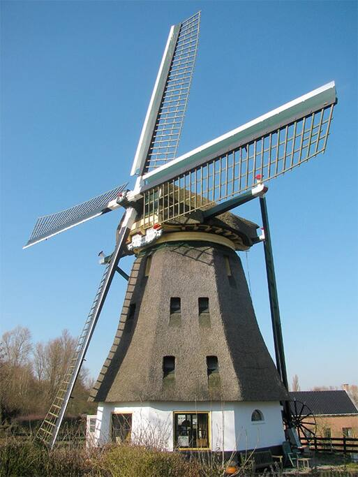 Windmill close by