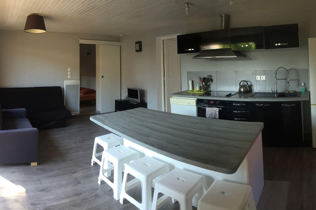 Salon/Cuisine (25m2)