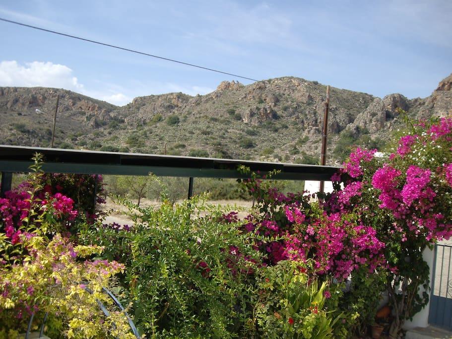 Andalousie Location Villa Avec Piscine Sorbas H User