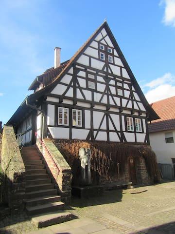 Traumwohnung auf dem Weingut in Keltern-Dietlingen - Keltern - Apartment