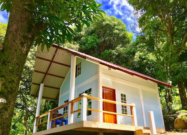 Whatavu Cabin Treehouse -Ocean Views-By Best Beach
