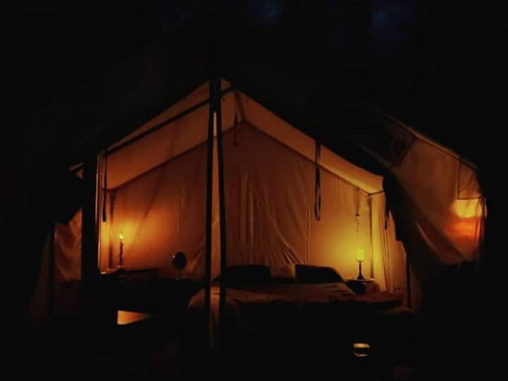 Tentrr Signature Site - The Magic Glamp  ... Make some magical memories. Your wish is our command