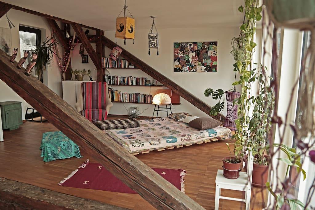 Sleeping / living area