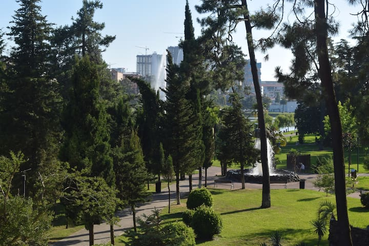 Private room in the city center with good views