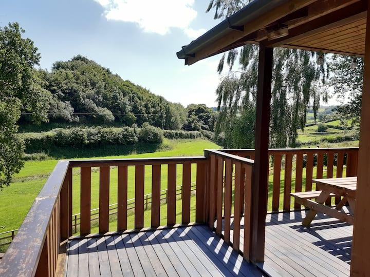 Beautiful Pine Lodge in Glorious Mid Devon