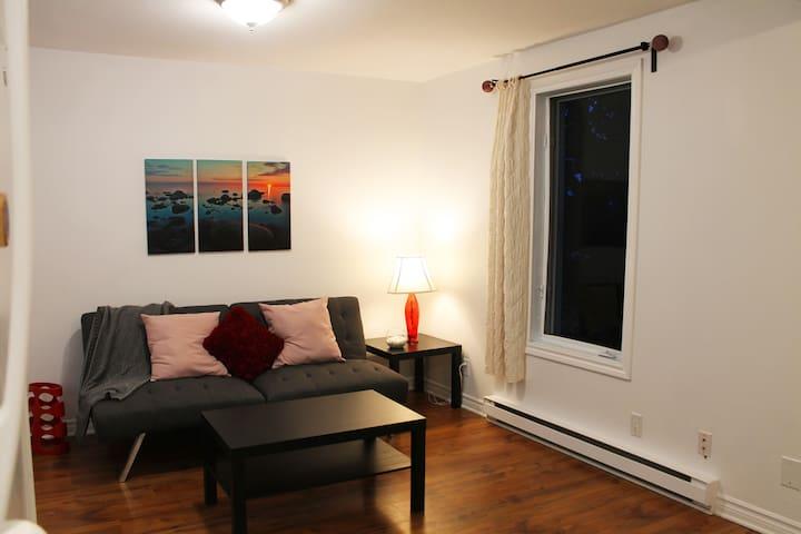 Salon à aire ouverte - Open concept living room