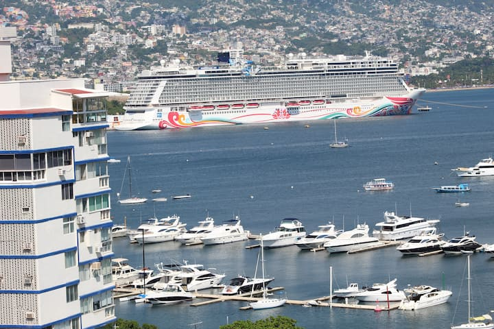 Depto.,Espectacular vista la Bahia. Acapulco, Gro.