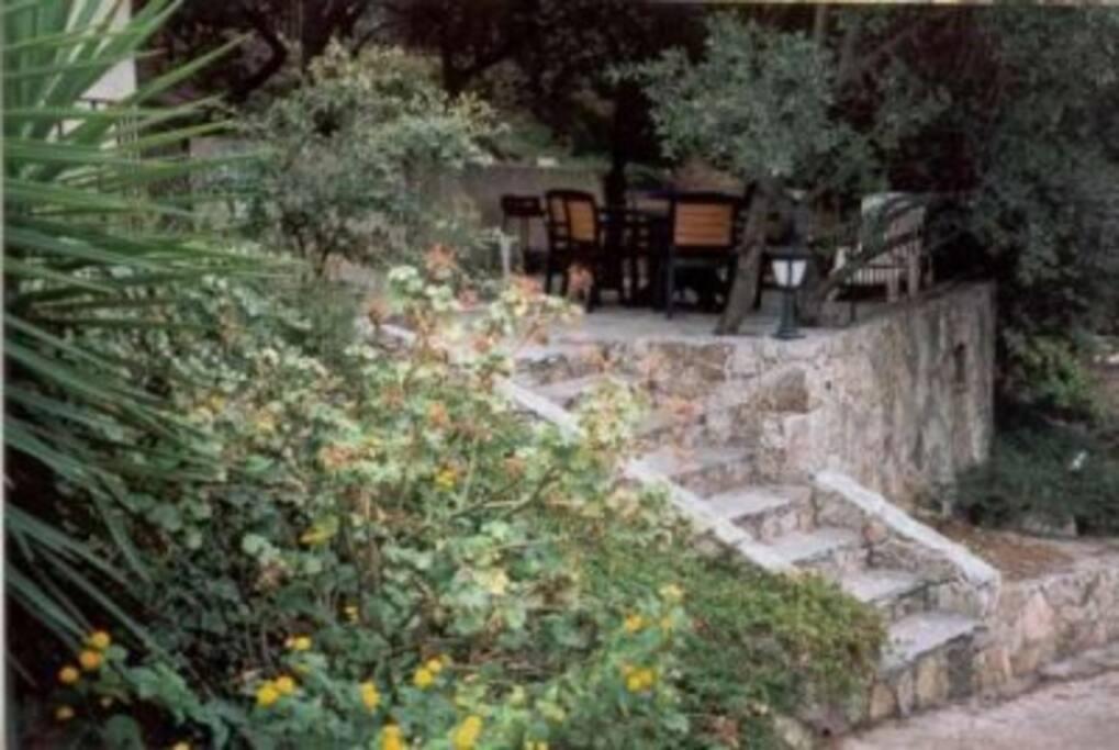 accés terrasse