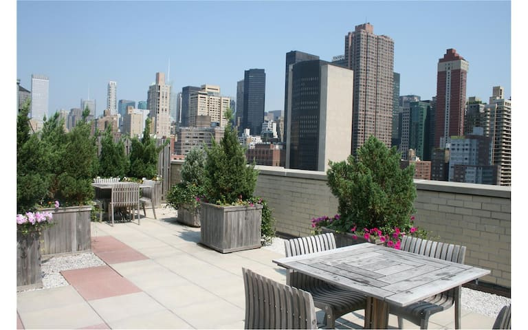 Manhattan 1BD in 2BD near ESB, UN, NYU w/roof deck