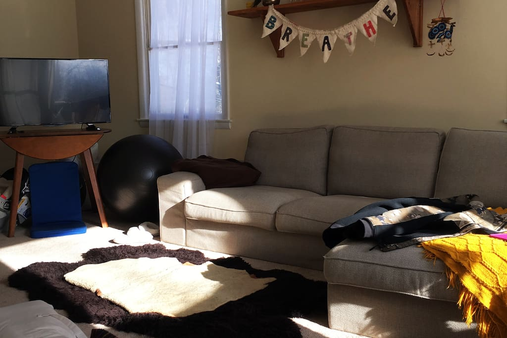 Living Room with tons of light!