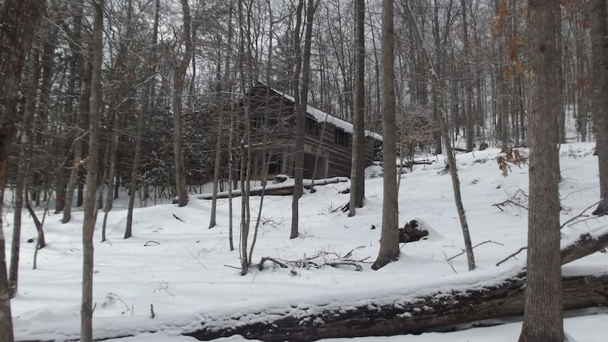 Treetops Cabin - Marion - Cottage